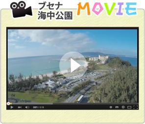 ブセナ海中公園プロモーション映像