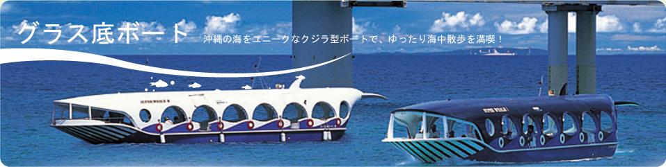 グラス底ボート・沖縄の海をユニークなクジラ型ボートで、ゆったり海中散歩を満喫!