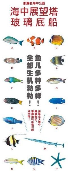 Webパンフレット中国語-簡体