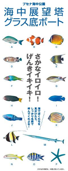 Webパンフレット日本語